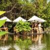 The Sarojin - Restaurant Ficus